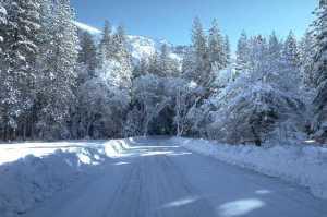 Winter Scene 0944