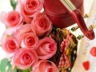 st-Valentine_14-757234