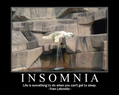 windowslivewriterhowtotreatyourowninsomnia-c1cbpolar-bear-insomnia-2