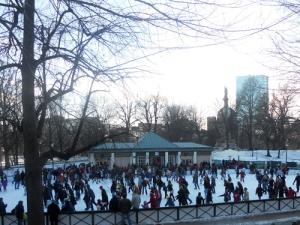 frog-pond-skating