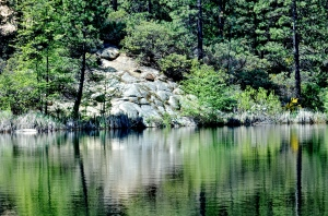 hirschman-pond-nevada-city-california-nikon-dslr-april-2014c2a9-sally-w-donatello-and-lens-and-pens-by-sally-2014