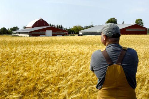 iStock_Farmer_field_farm-RGB